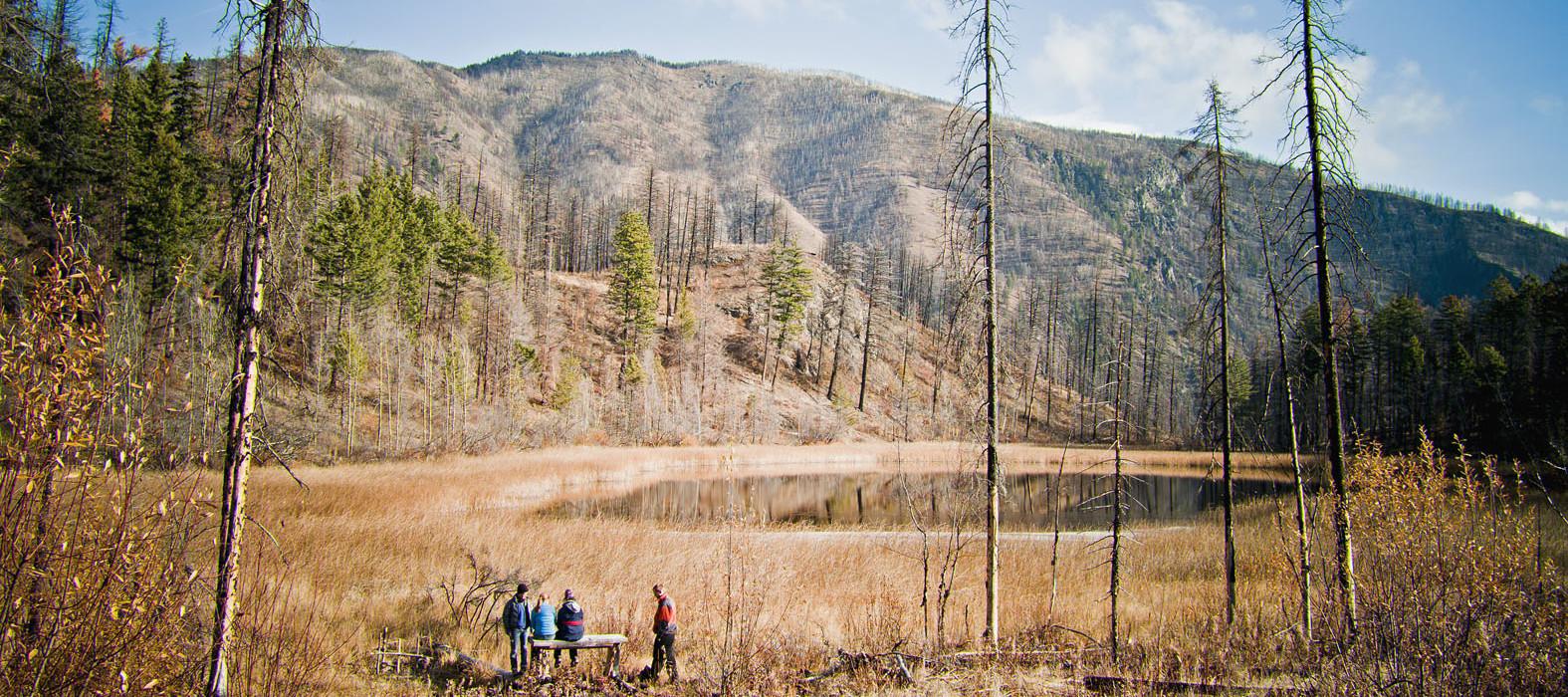 lake_volunteers -Trail Fees